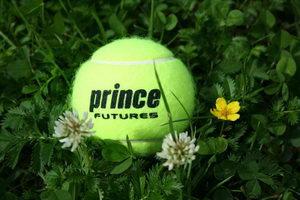 Prince - технологии будущего. Не всегда понятные современникам