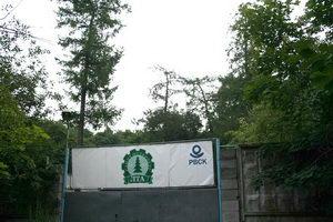 Дело лесотехников - выращивать леса
