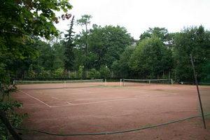 Но и в теннис поиграть на досуге можно