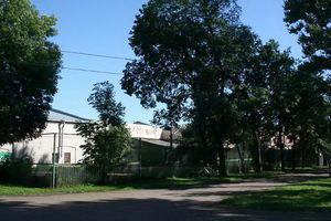 Вот так бы Чернышевский корты и увидал, с места казни.
