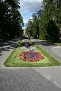 воронкой неба поглотит вас парк Зеленогорский